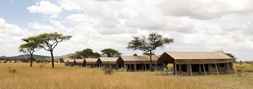 Serengeti Katikati Tented Camp