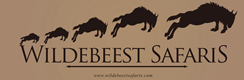 Wildebeest Safaris Ltd.