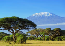 tours and travels in kenya
